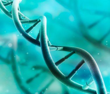 Identifican variantes genéticas raras relacionadas con la transmisión del autismo de los progenitores a los hijos